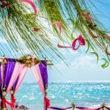 svadba-v-tropicheskom-stile-6