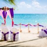 svadba-v-tropicheskom-stile-76