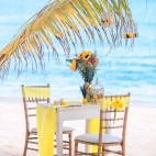 caribbean-wedding.info-07
