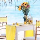 caribbean-wedding.info-08