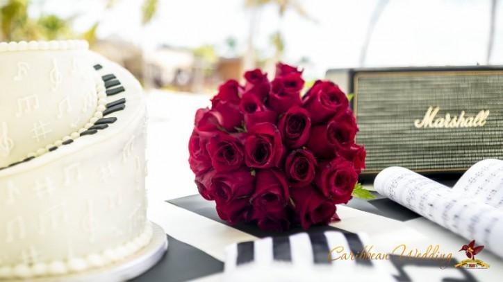 svadba-v-dominikanskoy-respublike-11